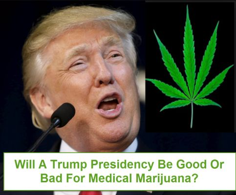Does The Trump Govt Threaten Recreational Marijuana?