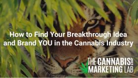 How to Find Your Breakthrough Idea & Brand YOU in the Cannabis Industry