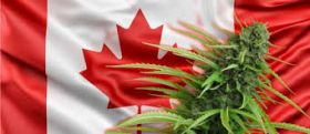 Canada Marijuana legalization Bill C-45 Officially Passes Senate Vote
