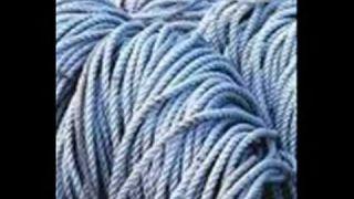 Hemp: 50,000 quality products