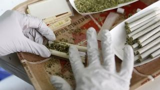 The Scientist Medical Marijuana Documentary New 2015 HD
